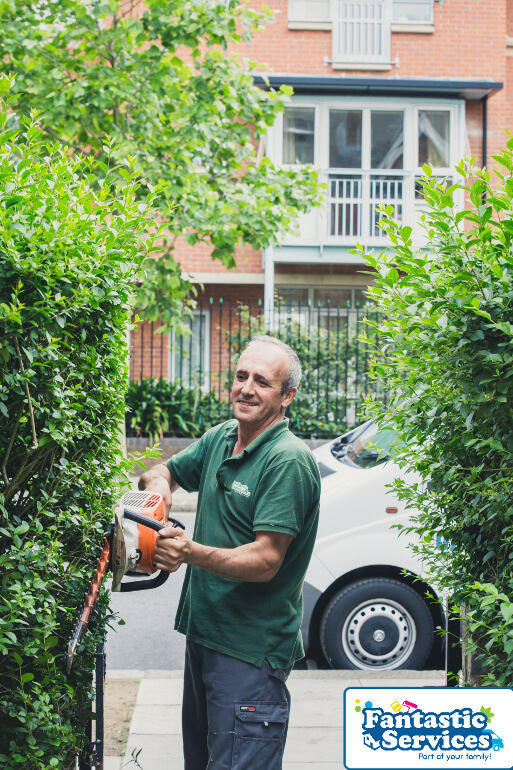 Hedge Trimming by Fantastic Gardeners
