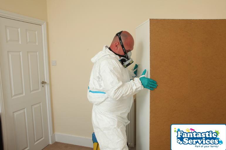 Pest control job 2