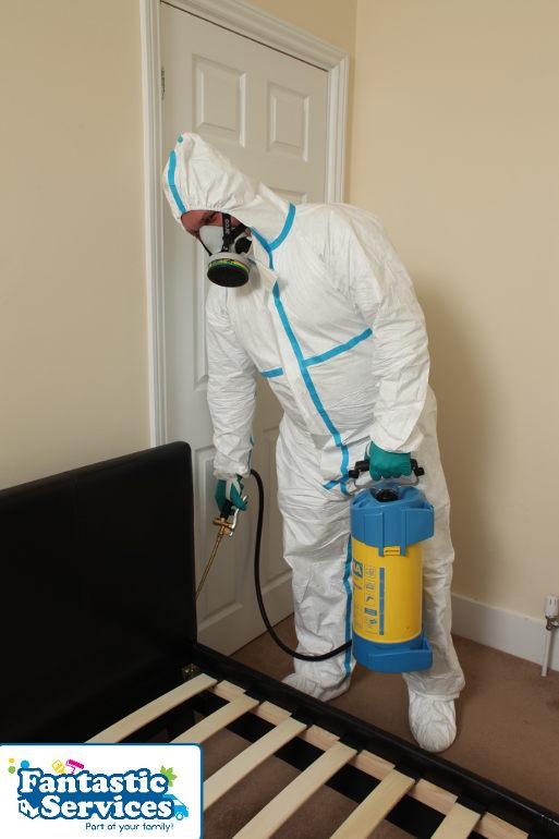 Pest control job 4