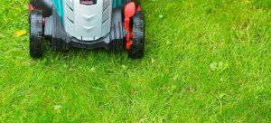 mower trimming wet grass