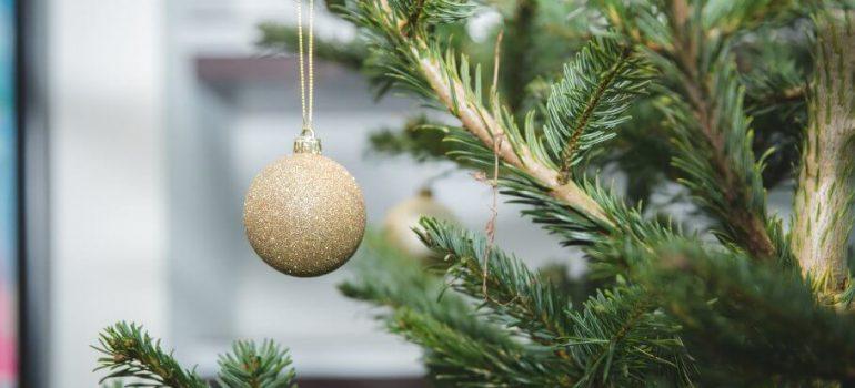 a decorated nordmann fir christmas tree