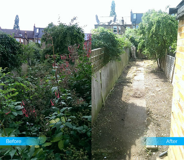 garden-clearance-3-by-Fantastic-Services