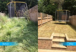 garden-clearance-by-Fantastic-Services