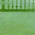drainage problems with artificial grass