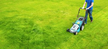 mowing the lawn - how often to cut grass