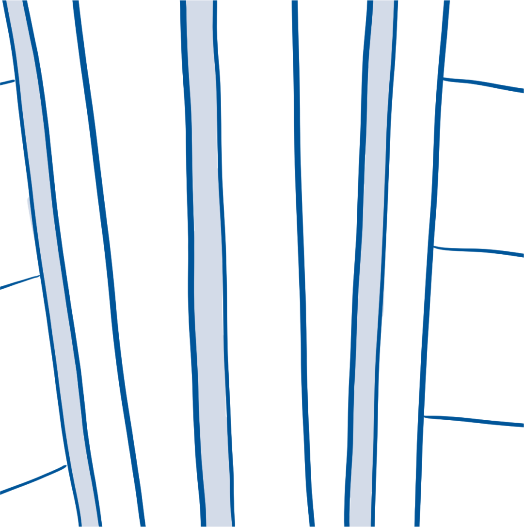 drawing of garden fence