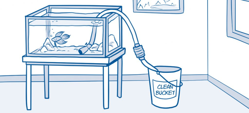 drawing of aquarium being drained