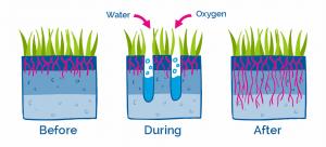 lawn aeration benefits