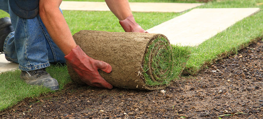 How much to turf a lawn