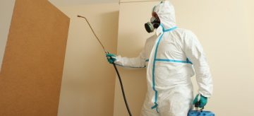 can-pest-controllers-visit-your-home-during-coronavirus-lockdown