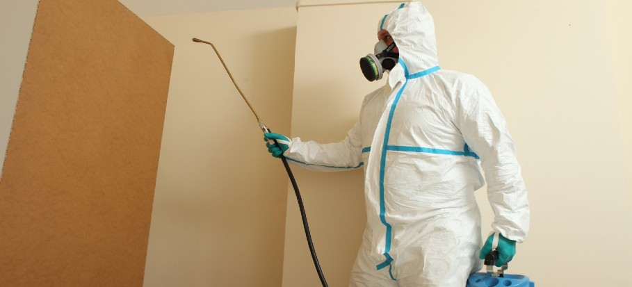 pest-control-during-COVID19